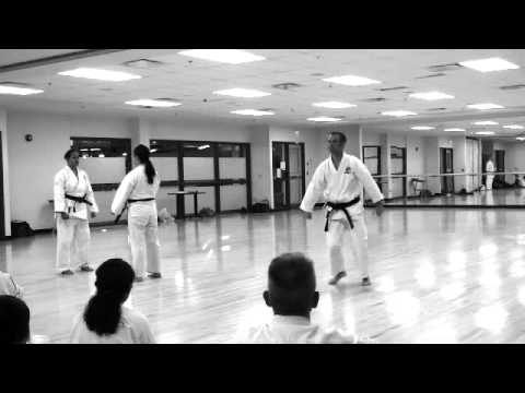 Goju Ryu kata application demo