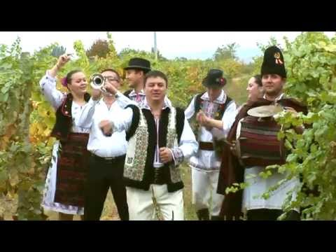 Constantin Beiu-Trompeta lui Vasile (videoclip)