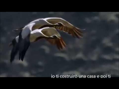 In un'altra vita Claudio Baglioni HD (Con Voi 2013) TESTO