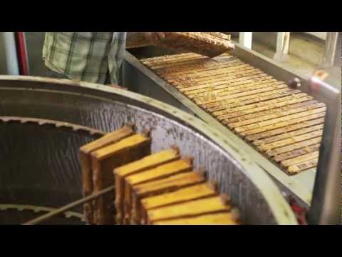 The Story Of Honey B Roll Package