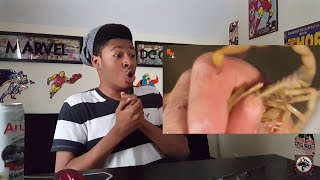 Which Scorpion STING is Worse?!....(REACTION!!!)