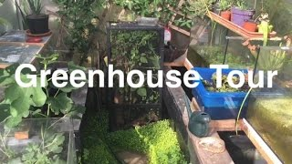 Reptile & Amphibian Greenhouse Tour 2016