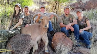 Hunters Blame Shooting On Immigrants