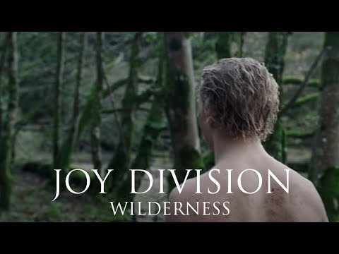 Joy Division - Wilderness (official Reimagined Video)