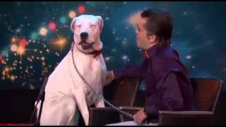 ¡IMPRESIONATE! PERRO CANTA COMO WHITNEY HOUSTON
