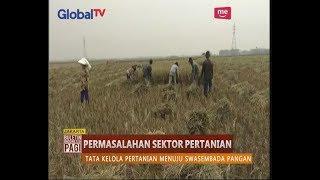 Masalah di Sektor Pertanian Menggerus Kesejahteraan Petani - BIP 20/09