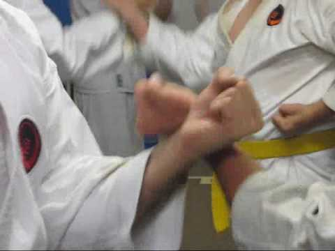 #1 Okinawan karate Traditional Okinawan Goju-Ryu Karate training Image 1