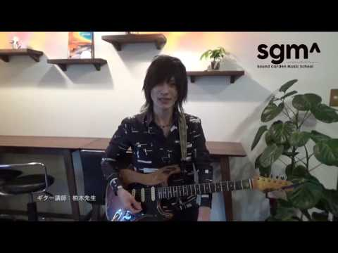 ビギナーギター紹介
