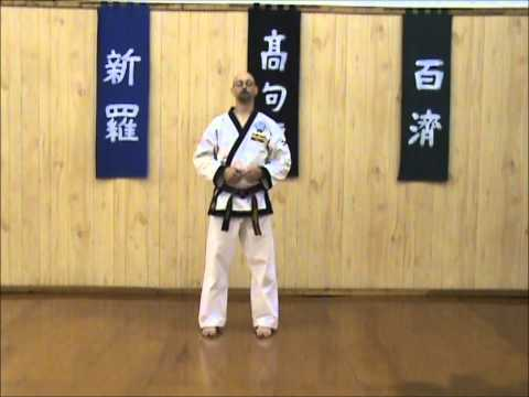 Tang Soo Do - Single Step Drill - Sequence 7 Image 1