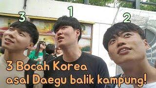 Download Lagu Korea Reomit pulang kampung Gratis STAFABAND