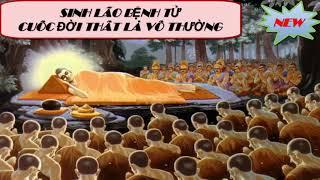 Sinh Lão Bệnh Tử - Cuộc Đời Là Vô Thường_Những Lời Phật Dạy