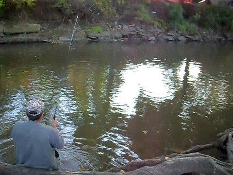 рыбалка на днестре база русалка