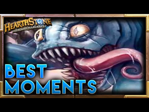 Hearthstone   Best Moments 38
