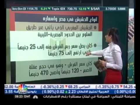 مداخيل تجارة الحشيش المغربي أكثر مرتين من مداخيل السياحة thumbnail