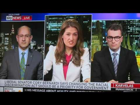 Jeremy Jones debates 18C on Sky News
