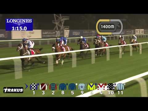 Vidéo de la course PMU DUBAI CITY OF GOLD