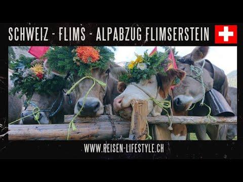 Alpabzug Flimserstein 2018, reisen-lifestyle.ch