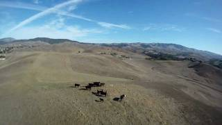 FPV - Take Cow Hill