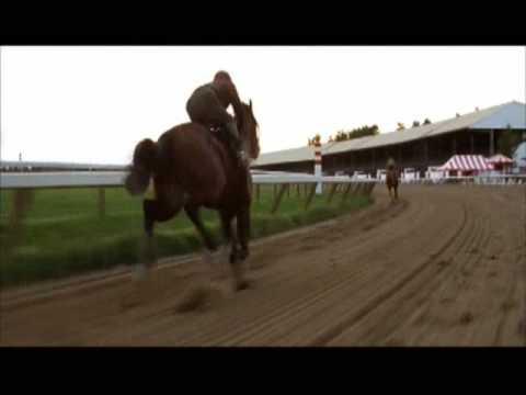 Unbroken - horse's racing