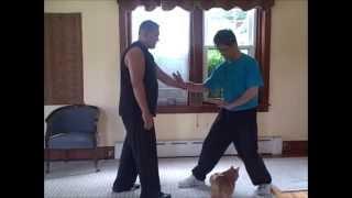 Sifu Lan Tran & Sifu Raj Singh - Hsing-i / Pi Chuan discussion