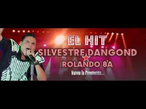 EL HIT - Silvestre Dangond & Rolando Ochoa -  EL CARTEL DE LOS SILVESTRISTAS