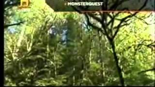 Monsterquest - Pie Grande ( Parte 4 de 5 )