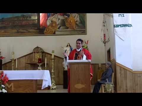 Misa Católica 06 Febrero 2013 - Lecturas y Homilía  - ecatolico.com
