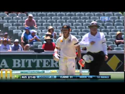 David Warner 145 Off 163 1st Test