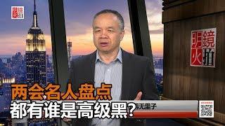 陈小平:两会名人盘点,都有谁是习近平的高级黑?