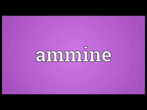 Header of Ammine