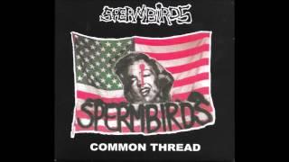 Watch Spermbirds Melt The Ice video
