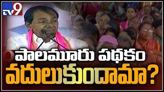 Chandrababu stopping Palamuru project works - KCR