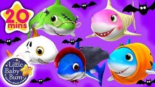 #Halloween Songs for Kids +More | Pumpkin Shark Compilation | Little Baby Bum