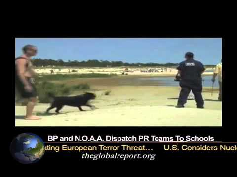 BP and N.O.A.A. Dispatch PR Teams To Schools