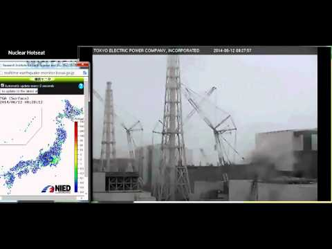 Fukushima Death ~ the Conspiracy of Silence