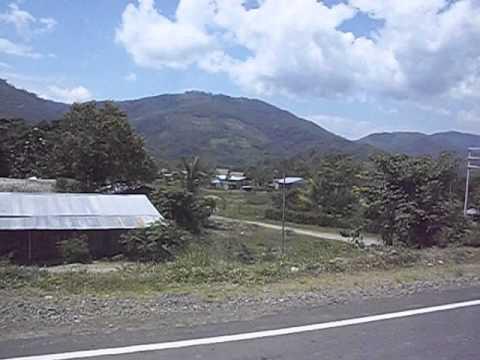 TJ - PERU CAMPANILLA