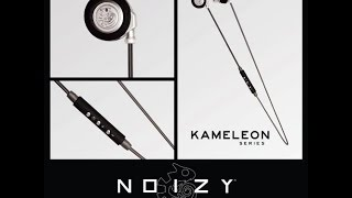 Noizy Brand Kameleon Series Bluetooth Earphone Review