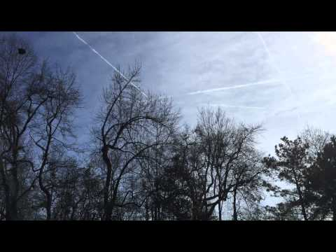DAILY DOSE: chem trails Columbia SC 1/31/15