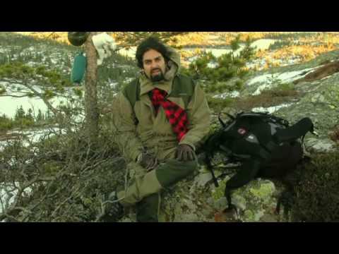 Zahid Ali - kompass (klikk HD)