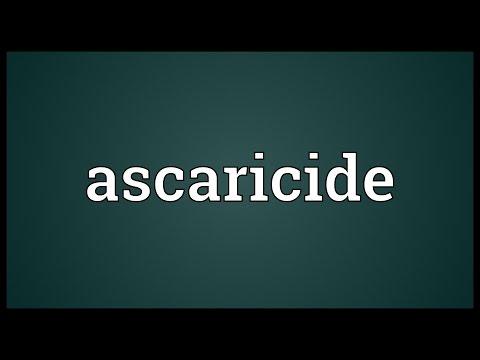 Header of Ascaricide