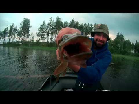 ютуб видеохостинг рыбалка в карелии