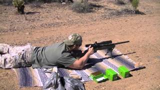 .308 Winchester - Hornady vs Federal Accuracy Test