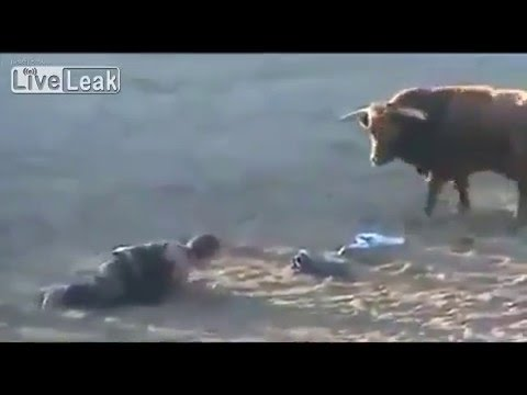 LiveLeak - Horrible Bull Fighting a man and the bull