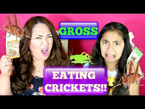 Cricket Challenge!! With Mommy Gross | B2cutecupcakes