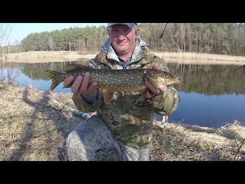 рыбалка во  брестской области получай карася видео