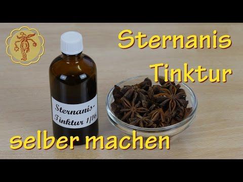 Sternanis-Tinktur selber machen - gegen Verdauungsprobleme und Nervenschmerzen