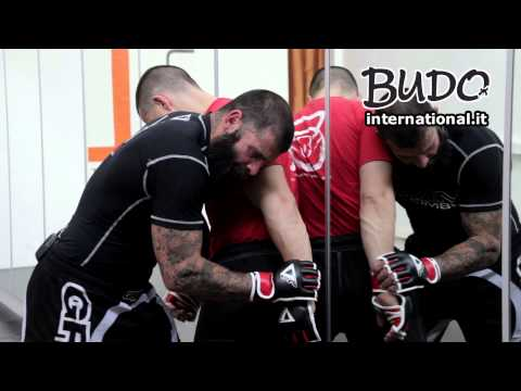 MMA:Tecniche di allenamento spiegate da Davide Morini (Mixed Martial Arts Training Techniques) - #03 Image 1