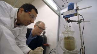 Non-Toxic Gold Extraction | Research at Curtin