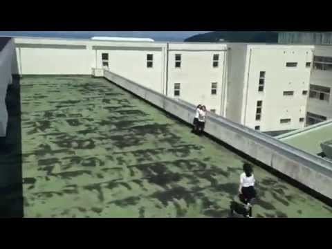 [The Most Amazing Video - Japanese Practicing Parkour.] Video