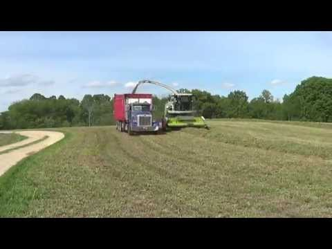 Claas 940 Forage Harvester chopping haylage in Wisconsin